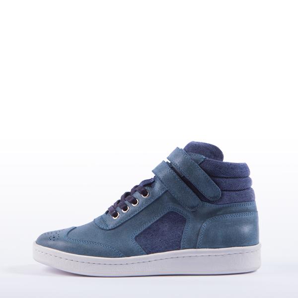 CMS2008_blue1